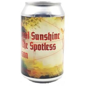 DOK / La Zorra The Eternal Sunshine of the Spotless Saison