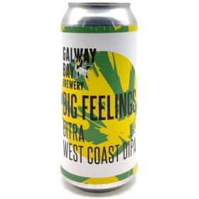 Galway Bay Big Feelings